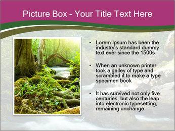 0000081048 PowerPoint Template - Slide 13