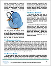 0000081049 Word Templates - Page 4