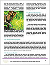 0000081056 Word Templates - Page 4