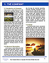 0000081058 Word Template - Page 3