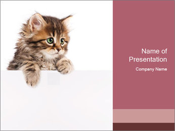 0000081059 PowerPoint Template