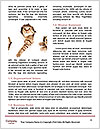 0000081059 Word Templates - Page 4
