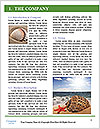 0000081064 Word Template - Page 3