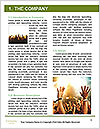 0000081065 Word Templates - Page 3