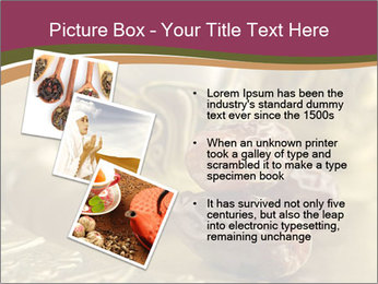0000081066 PowerPoint Templates - Slide 17