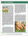 0000081068 Word Template - Page 3