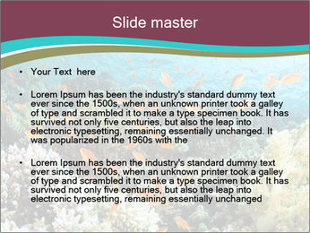 0000081070 PowerPoint Templates - Slide 2