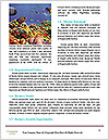 0000081070 Word Templates - Page 4