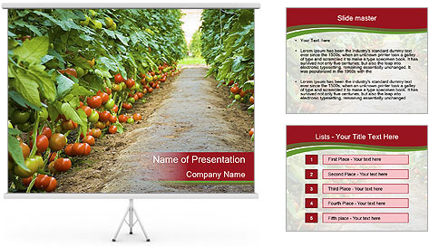 0000081072 PowerPoint Template