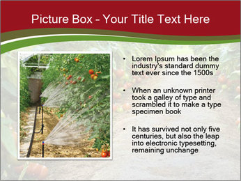 0000081072 PowerPoint Template - Slide 13