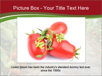 0000081072 PowerPoint Template - Slide 16