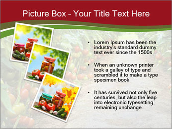 0000081072 PowerPoint Template - Slide 17
