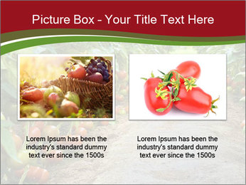 0000081072 PowerPoint Template - Slide 18