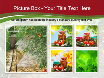 0000081072 PowerPoint Template - Slide 19