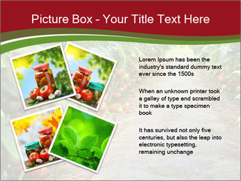 0000081072 PowerPoint Template - Slide 23