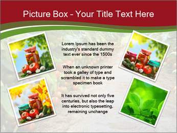 0000081072 PowerPoint Template - Slide 24