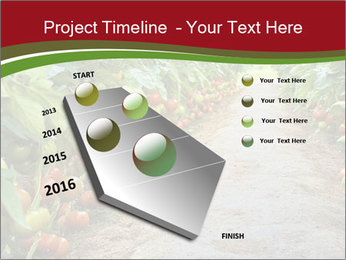 0000081072 PowerPoint Template - Slide 26