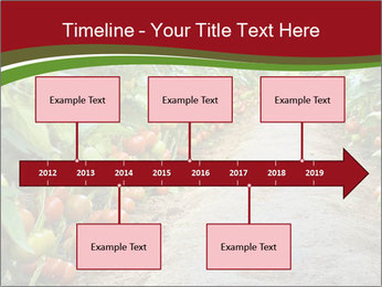 0000081072 PowerPoint Template - Slide 28