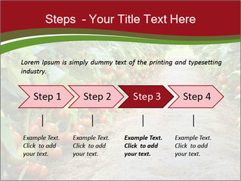 0000081072 PowerPoint Template - Slide 4