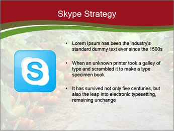 0000081072 PowerPoint Template - Slide 8