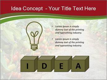 0000081072 PowerPoint Template - Slide 80