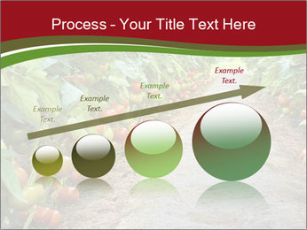 0000081072 PowerPoint Template - Slide 87