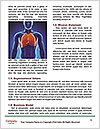 0000081081 Word Templates - Page 4
