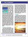 0000081086 Word Template - Page 3