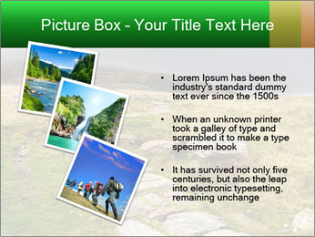 0000081087 PowerPoint Template - Slide 17
