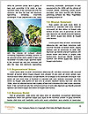 0000081087 Word Templates - Page 4