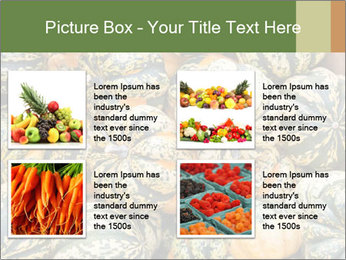 0000081097 PowerPoint Templates - Slide 14