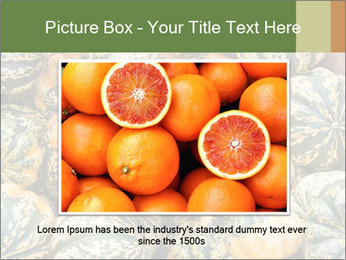 0000081097 PowerPoint Templates - Slide 16