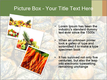 0000081097 PowerPoint Templates - Slide 17
