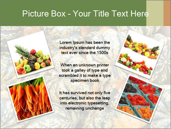 0000081097 PowerPoint Templates - Slide 24