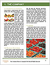 0000081097 Word Template - Page 3