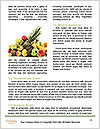 0000081097 Word Template - Page 4