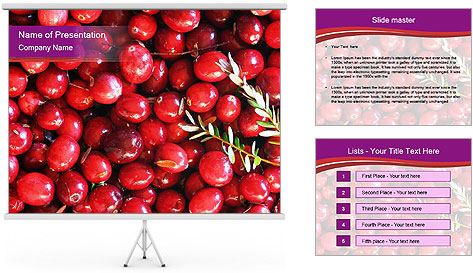 0000081098 PowerPoint Template