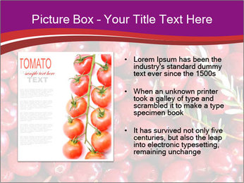 0000081098 PowerPoint Templates - Slide 13