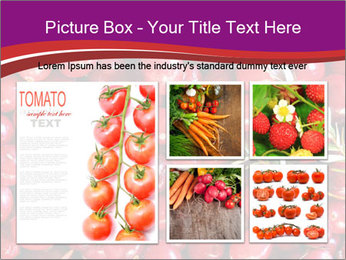 0000081098 PowerPoint Templates - Slide 19
