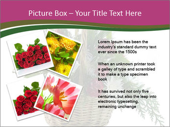 0000081105 PowerPoint Templates - Slide 23