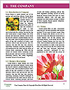 0000081105 Word Templates - Page 3