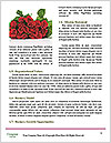 0000081105 Word Templates - Page 4
