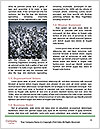 0000081109 Word Template - Page 4