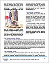 0000081111 Word Template - Page 4