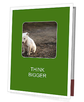 0000081112 Presentation Folder