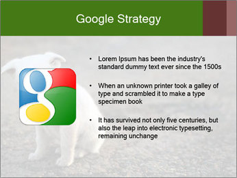 0000081112 PowerPoint Templates - Slide 10