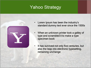 0000081112 PowerPoint Templates - Slide 11