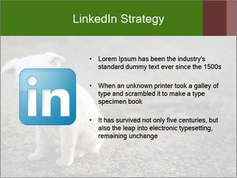 0000081112 PowerPoint Templates - Slide 12
