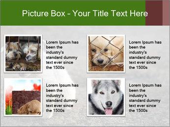 0000081112 PowerPoint Templates - Slide 14