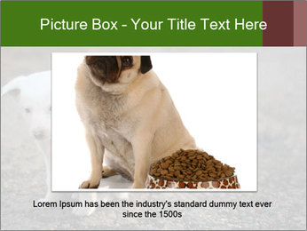 0000081112 PowerPoint Templates - Slide 15